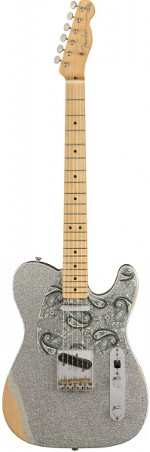 TELECASTER SIGNATURE BRADPAISLEY ROAD WORN FENDER